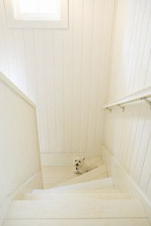 tongue and groove white hallway