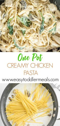 This Creamy Chicken Pasta recipe makes it easy to cook a wholesome dinner using just one pot. The best thing is, you can customize it to suit the tastes of your family - it tastes great as it is, but you can also add mushrooms and spinach too New Chicken Recipes, Baby Food Recipes, Dinner Recipes, Healthy Recipes, Fall Recipes, Creamy Chicken And Noodles, Creamy Pasta, Chicken Noodles, Chicken Mushroom Pasta