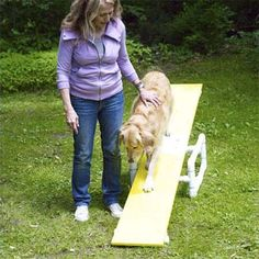 Dog Agility How to Build a Pet Agility Course - Build this easy-to-assemble agility course for your dog, and watch him get happier, healthier—and smarter Agility Parcour, Agility Training For Dogs, Training Your Puppy, Dog Training Tips, Potty Training, My Champion, Dog Behavior, Dog Care, Dog Toys