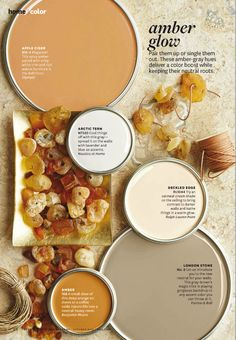 Amber glow paint colors, from BHG.