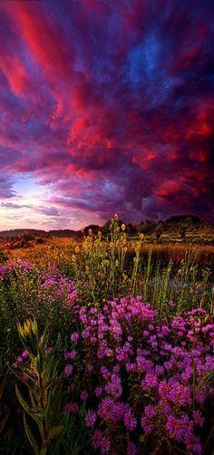 Life Love and Hope - Wisconsin Horizons Milwaukee, USA by Phil Koch