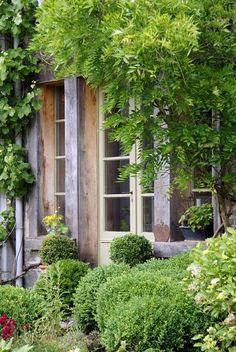 Love our french doors, are we taking the Vespa and then walking around?.....  Everything's getting so green & pretty.