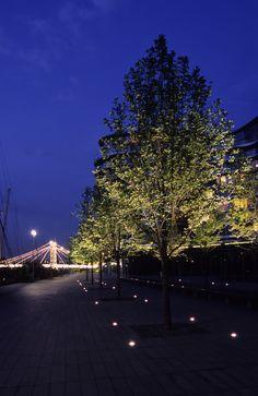 Tropical Landscape Lighting, Urban Landscape, Landscape Art, Landscape Architecture, Landscape Design, Park Lighting, Tree Lighting, Cool Lighting, Outdoor Lighting