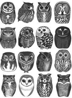 possible owl tattoo. A quick-list of owl symbolic meanings: Wisdom Mystery Transition Messages Intelligence Mysticism Protection Secrets Cute Owl Tattoo, Owl Tattoos, Tiny Owl Tattoo, Tattoo Animal, Tattoo Ink, Arm Tattoo, Fish Tattoos, Sleeve Tattoos, Owl Tattoo Design