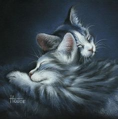 Cat Drawing - Sweet Dreams by Cynthia House