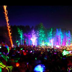 I need electric forest in my life