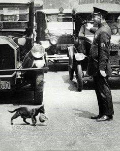 New York 1925: un poliziotto ferma il traffico per far passare una signora e il suo bimbo. :) Questo è il mondo che vogliamo!