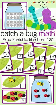 Catch a Bug Math Activity and Free Printable: The printable includes numbers several different bug jars, a chart, and was designed so you can adapt it to suit your child Free Preschool, Preschool Activities, Preschool Kindergarten, Preschool Printables, Preschool Learning Centers, Preschool Bug Theme, Montessori Preschool, Montessori Elementary, Educational Activities
