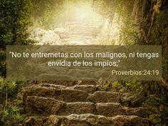 Proverbios 24:29