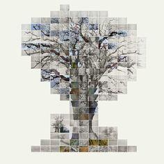 Film of the three trees, No 3 - Noel Myles - Bilder, Fotografie, Foto Kunst online bei LUMAS Mix Media, David Hockney Joiners, Tree Plan, Art For Sale Online, Art Online, Photo Mosaic, Photo D Art, Hobby Photography, Photomontage