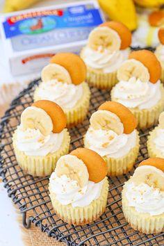Banana Pudding Cheesecake, Banana Pudding Recipes, Homemade Cheesecake, Easy Cheesecake Recipes, Cheesecake Bites, Dessert Recipes, Pudding Cake, Cheesecake Squares, Cheesecake Cake