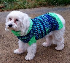 Dog sweater made on a round Knifty Knitter (pattern link in the sidebar)