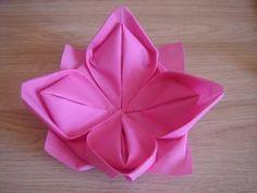 Ci dessous un lien qui vous apprendra comment plier une serviette en forme de fleur de lotus  http://www.dailymotion.com/video/xe328o_pliage-de-serviettes-nenuphar-fleur_lifestyle