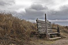 Mendocino Bluff