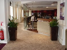 Planters used as entrance pieces in a bar