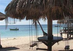 Zip-lining and snorkeling in Isla Roatan, Honduras- loved eating lunch in those swings!