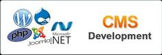 Our CMS development services are aimed to provide you with the most flexible and feasible websites.
