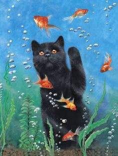 Black Cat playing with Gold Fish - Black Cats - I Love Cats, Crazy Cats, Cool Cats, Bubble Cat, Black Cat Art, Black Cats, Frida Art, Cat Drawing, Beautiful Cats