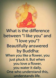 Buddha quote - Meditation Quotes & Positive Affirmations From AwakeningIntuition com Offering a Collection of Spiritual Wisdom Life Changing sayings Click above Link to view an Extensive Collection FREE👌 Ebo Buddha Quotes Inspirational, Spiritual Quotes, Positive Quotes, Buddhist Quotes Love, Positive Affirmations, Inspiring Quotes, Amazing Quotes, Quotable Quotes, Wisdom Quotes