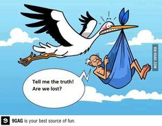 This must be my stork! A little humor Funny Cartoons, Funny Comics, Funny Jokes, Hilarious, Really Funny, The Funny, Funny Cartoon Pictures, Humor Grafico, Funny Pins