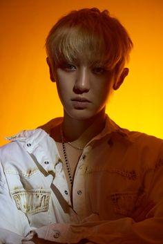 New EXO SC Wallpaper | Sehun & Chanyeol | WaoFam Wallpaper Baekhyun Chanyeol, Exo Exo, Kai, K Pop, Kdrama, Luhan And Kris, Gu Family Books, Z Cam, Big Bang Top