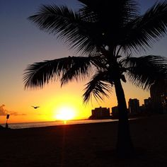 Sunsets in Puerto Rico.