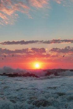 """earthyday: """" Sunrise with Birds and Pastels © Kevin Reynolds """""""