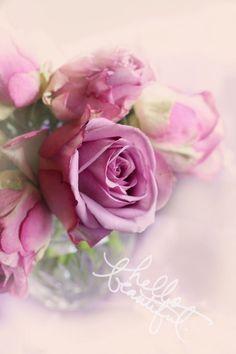 Beautiful flower arrangement .... ♥♥ ....