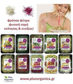 Φρέσκα φύτρα 'Plus Organica' Η πιο ζωντανή τροφή! Φυσική πηγή νεότητας και ευεξίας! Μεγάλη ποικιλία! Φύτρα άλφαλφα,  φύτρα ρεβύθι-φασόλι αζούκι-φασόλι ροβίτσα, φύτρα ρέβας, φύτρα πατζάρι-άλφαλφα-σκόρδο, φύτρα μπρόκολου, φύτρα σπαραγγιού, φύτρα ραπανάκι, φύτρα ρέβας, πράσου, σκόρδου. Οφέλη, πως τρώγονται κ.α