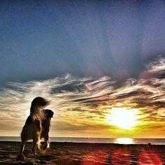 Beautiful shot!!