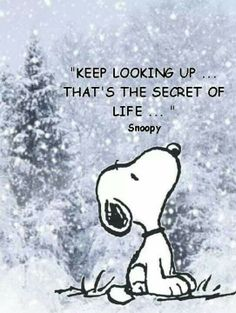 Snoopy quote on life
