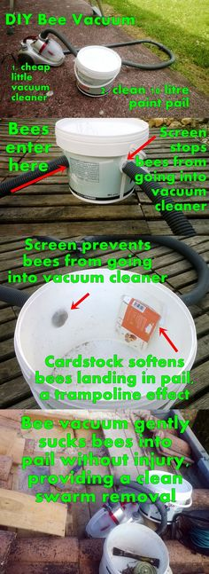 DIY Bee Vacuum - Create a gentle bee vacuum for clean swarm removals and help #savethebees!  made with a recycled paint pail and a freebie cheap vacuum from Staples Office products.