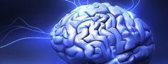 Gehirn mit Lichtblitzen-Neurowissenschaft: Wie entsteht Gewalt im Gehirn? Was passiert im Kopf, wenn jemand wahllos die Fäuste sprechen lässt und ein unschuldiges Opfer attackiert? Ein Versuch liefert neue Hinweise. von Daniela Zeibig