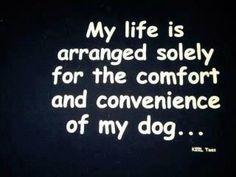 my life....