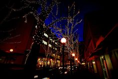 Downtown Seattle - Christmas Lights