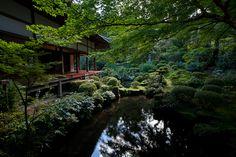 IMG_7884 Zen Rock, Buddhist Temple, Garden Bridge, Kyoto, Amazing Places, The Good Place, Rocks, Outdoor Structures, Japan