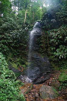 The Leo waterfall America 2, South America, Go See, Just Go, Places To Travel, Wander, Waterfall, Paradise, Scenery