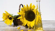 A list of carrier oils and their benefits. What are carrier oils? Carrier oils are oils that help carry absolutes and essential oils. How To Make Sunflower, Sunflower Oil, Primrose Oil, Evening Primrose, Best Cooking Oil, Healthy Cooking, Healthy Food, Omega 3, O Ritual
