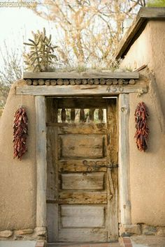 A great example of the design - there is dirt on the roof top so things grown in it - you can see a cholla cactus and some grasses growing above the door.  The red chile ristras, (stringed-up and dried red New Mexico chiles) are hanging on either side of the door, as the native peoples have done for centuries!