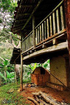 La casona del Papá de Ildefonso, vieja y hermosa construcción de madera y Bareque, rodeada por una exuberante vegetación y de antiguos Cafetales, en el Sitio La Mesa de Piñas, El Oro, Ecuador.