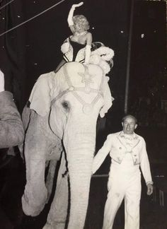 Marilyn at a Madison Square Garden Charity Circus Gala, March 1955.