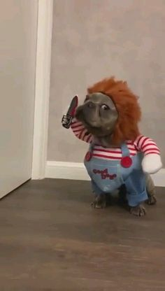 I am gonna getcha - Funny Animals Funny Dog Memes, Funny Animal Memes, Funny Animal Videos, Funny Animal Pictures, Funny Dogs, Dog Videos, Cute Videos, Videos Funny, Funny Photos