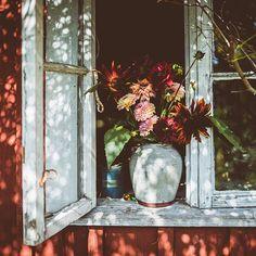Kristin lagerqvist (@krickelin) • Foton och videoklipp på Instagram Terrarium, Places, Painting, Instagram, Home Decor, Happy, Terrariums, Decoration Home, Room Decor