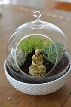 terrarium ideas succulent plants glass vessels Buddha statue hanging terrarium