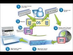 Enumerating DNS records with DNSenum Tool in Kali Linux Open Browser, Network Infrastructure, Line Tools, Information Technology, Linux, Coding, Names, Internet