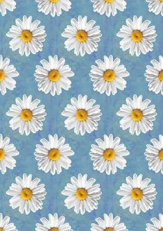 Imagine flowers, wallpaper, and daisy Daisy Wallpaper, Cute Patterns Wallpaper, Iphone Background Wallpaper, Tumblr Wallpaper, Phone Backgrounds, Blue Wallpapers, Pretty Wallpapers, Aesthetic Backgrounds, Aesthetic Wallpapers
