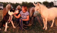 "Duke, adopted from Wayside Waifs – Kansas City, MO:""Here is Duke hanging out with his backyard buddies."""