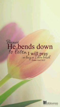 Psalm card