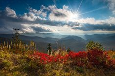 North Carolina Blue Ridge Parkway Scenic Landscape in Autu… | Flickr