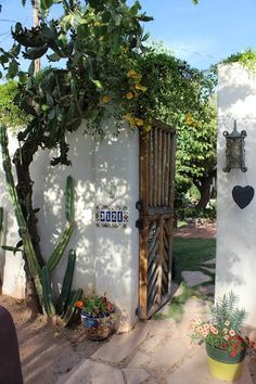 Front gate of my adobe house. Jan Wolfe